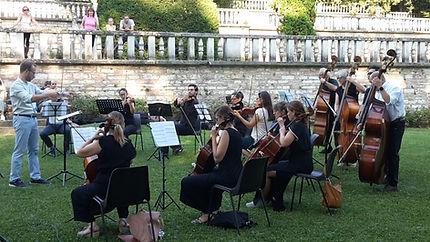 orchestra archi adulti.jpg