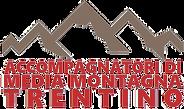 logo amm 2018 (1).png