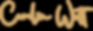 Logo_1.0_gold_Doc.png