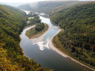 L'idée d'un nouveau parc provincial dans le Restigouche.
