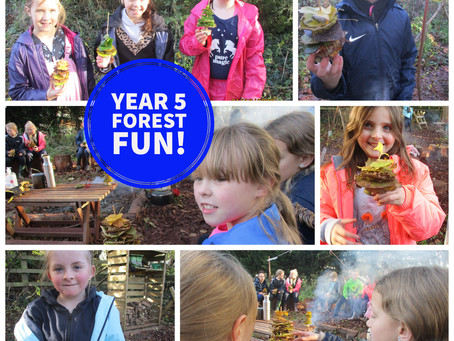 Year 5 Forest Fun