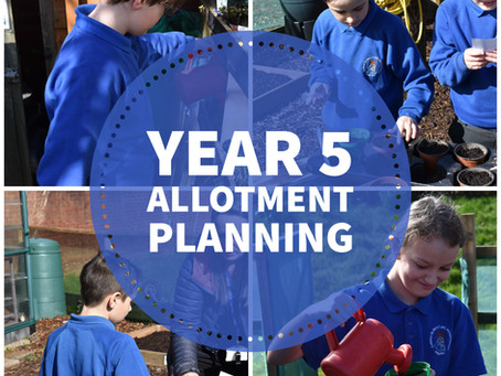 Year 5 Allotment Planning