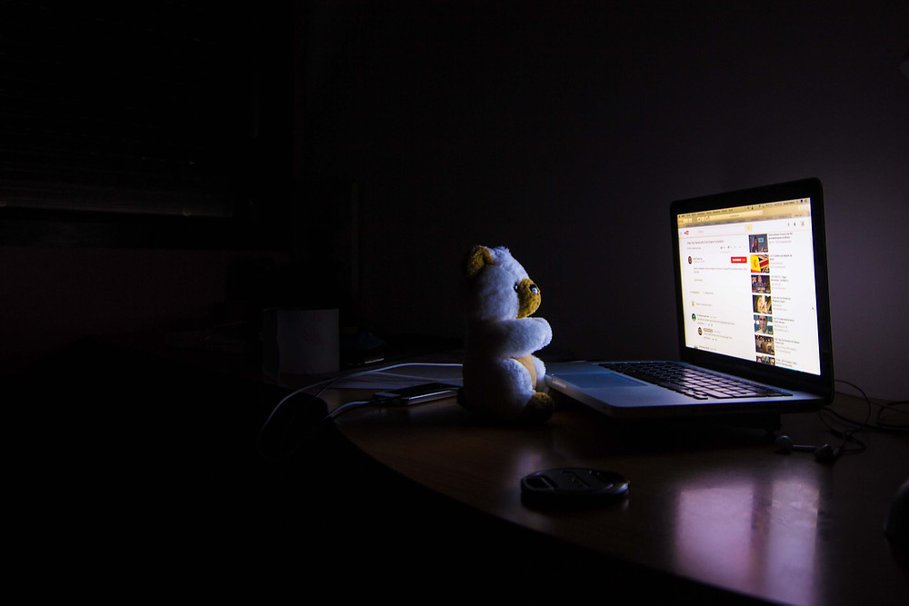 A white teddy bear looking at a laptop screen