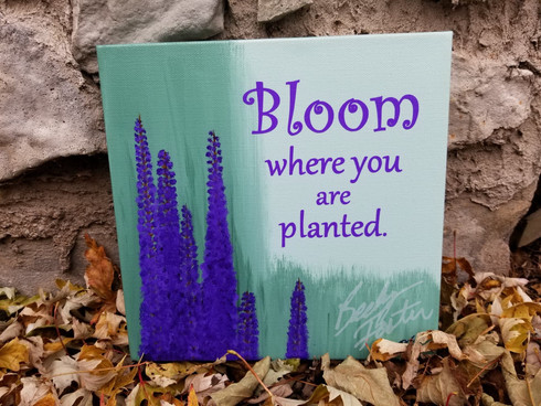 Bloom where you are planted (2019)