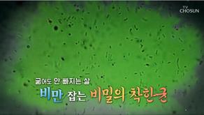 TV조선 <위대한유산>백세시대 프로젝트 4/18일방송분