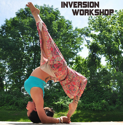@laurasykora Inversion Workshop
