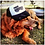 Thumbnail: Yoga Homie Trucker Hat