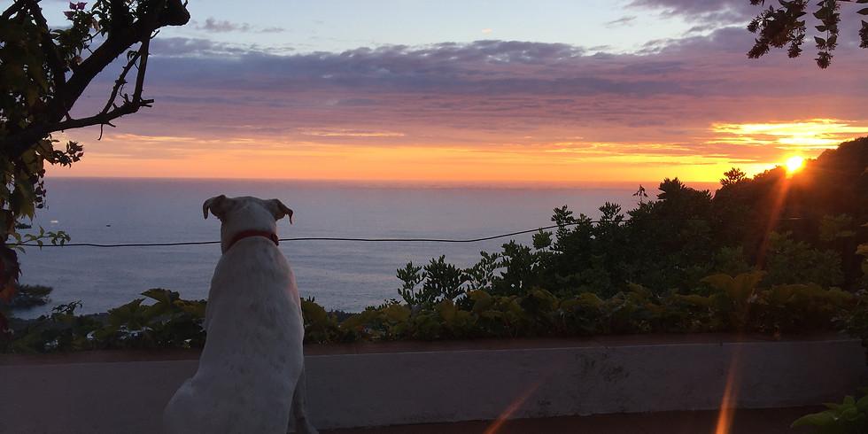 Conversazioni al tramonto