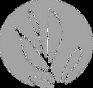 bioflore_Logo_Picto_NB_edited.png