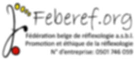 2013_logo_feberef_75ko.jpg