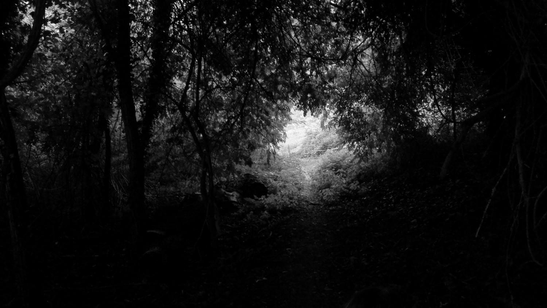 Passage II