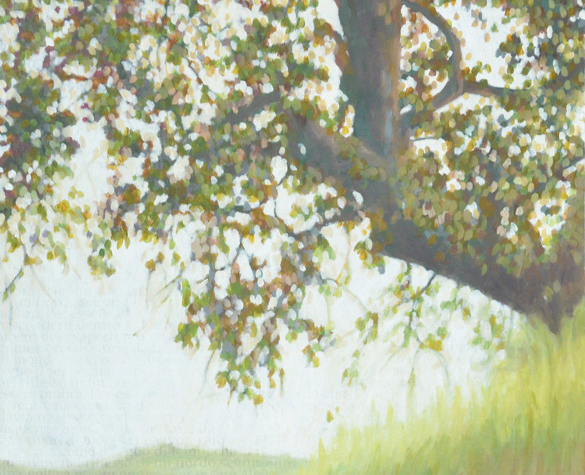 Olive tree, 100x200 cm ( diptic)