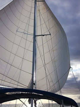 ARC 2019 | Sail Atlantic | Skipperd Charter | Atlantic Crossing by sailing boat