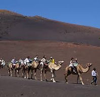 Camals rides Canary Islands | Sail Canaries | Canary Sail