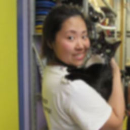 Ingrid's haven cat sanctuary
