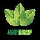 Zen Leaf.png