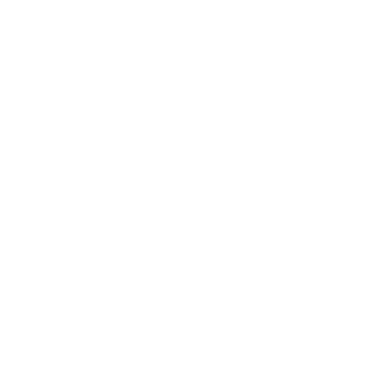 texas white (1).png