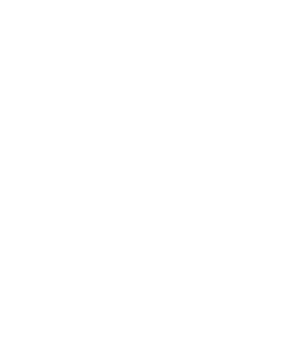 germany white (1).png