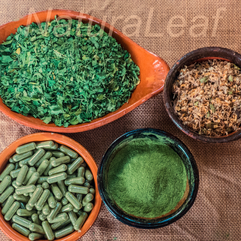 NaturaLeaf sell three formats of Canarian Moringa; Capsules, dry powder and dried leaves.
