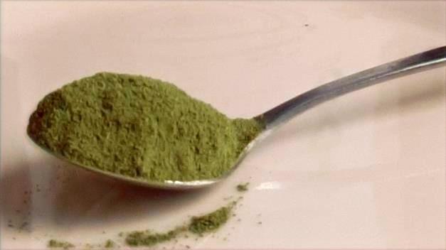 La Moringa NaturaLeaf en polvo es perfecto para platos salados o dulces.