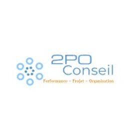 2PO-Conseil-Logo-2_edited.jpg