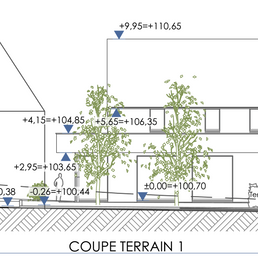coupe terrain 1.png
