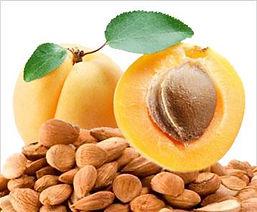 apricot-kernels_orig.jpg