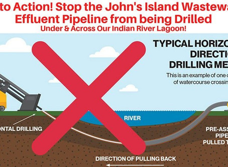 CWC Issues Statement Opposing John's Island Reuse Water Pipeline Proposal