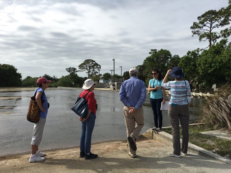Egret Marsh Stormwater Treatment Facility Tour