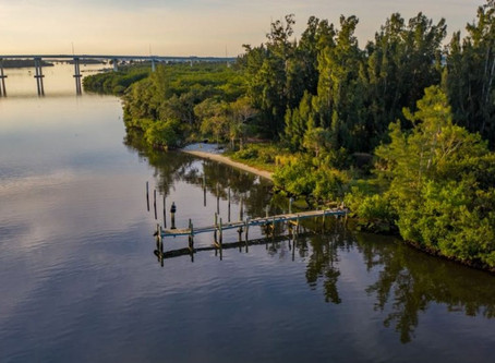 Indian River Lagoon will benefit from land trust's purchase of 100 acres in Vero Beach