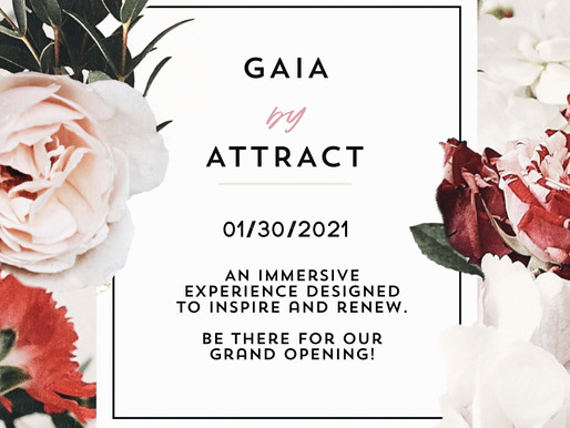 Get to know the Brands at GAIA