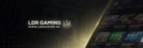 LDR Gaming Twitter Header professional.p