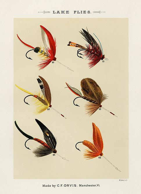 FliesLures_A3002