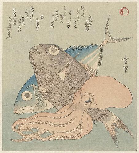 FishSea_A1001