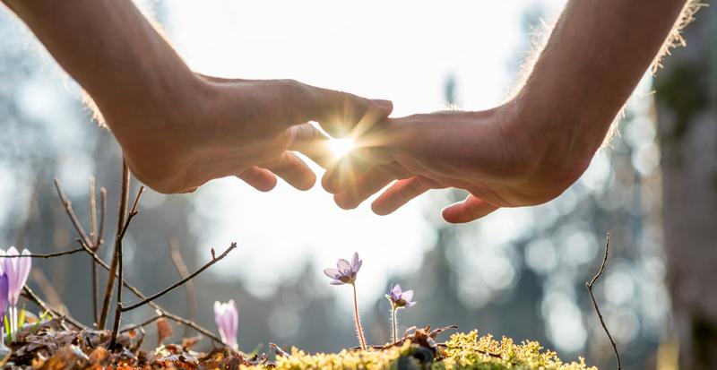 Integrate Energy Healing