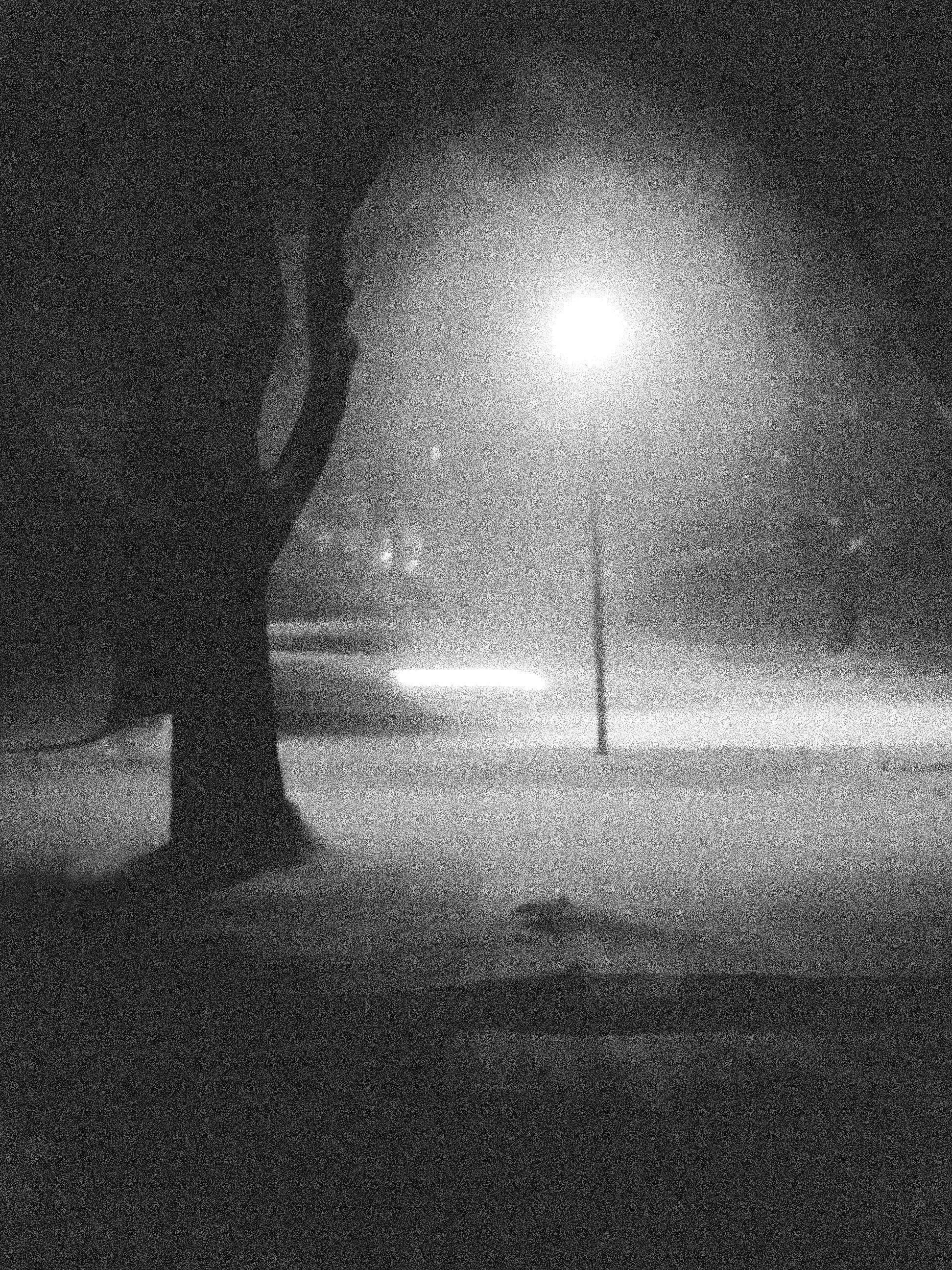 snowy road3
