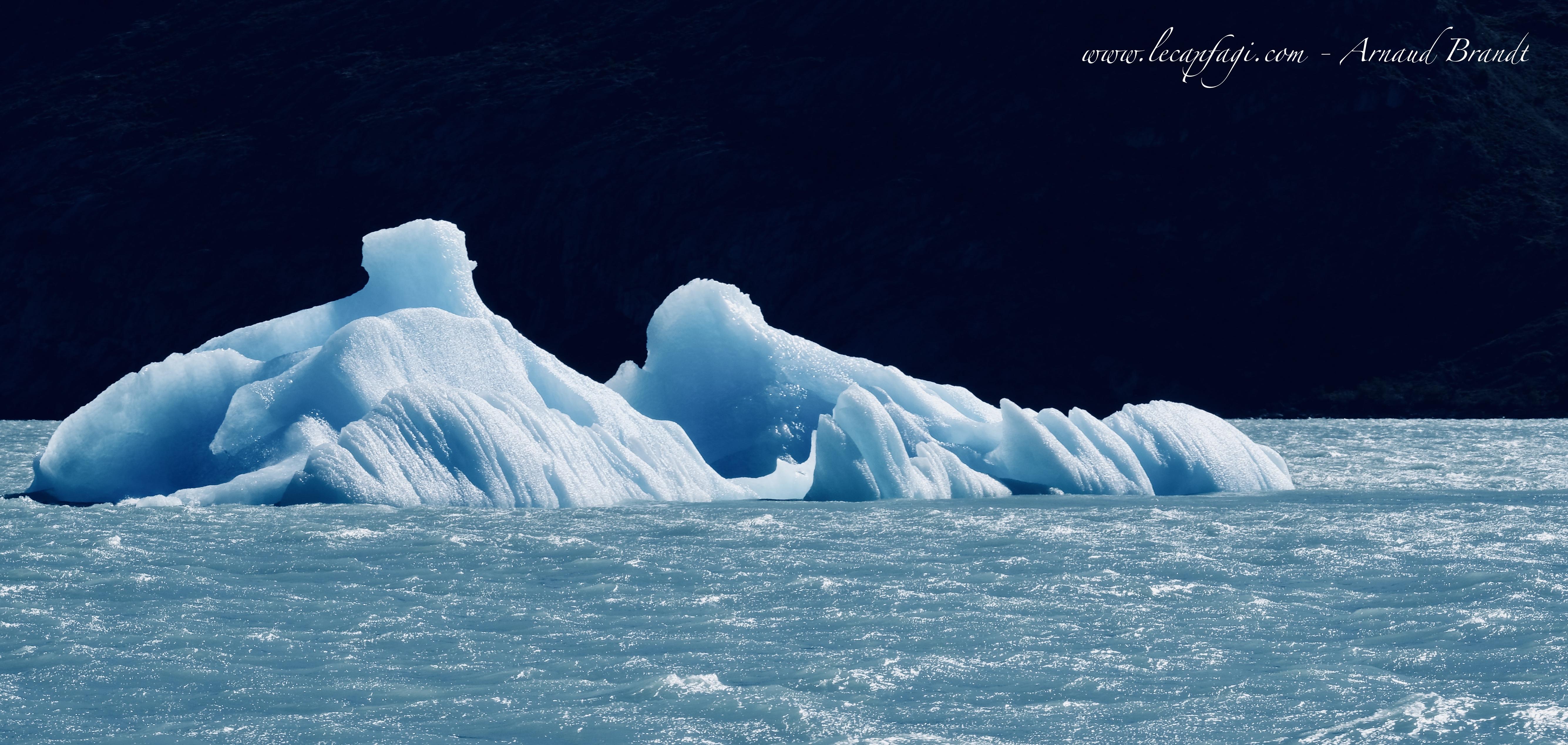 Croisière dans les Glaciers