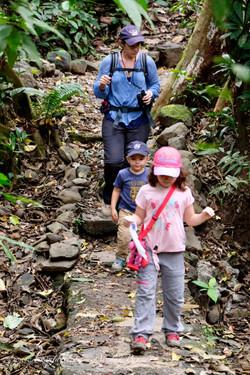 Costa Rica - Carara
