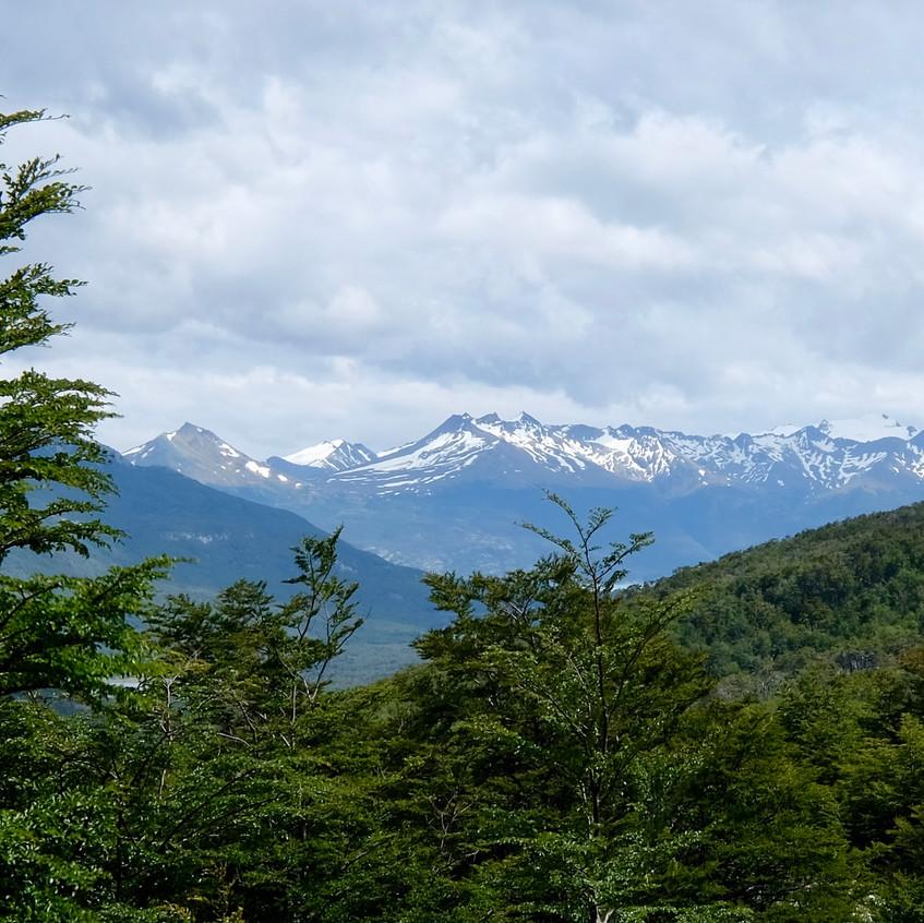Parc national terre de Feu, Ushuaïa