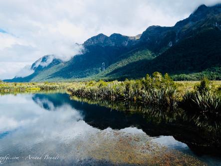 On est mouillés chez les kiwis! Etape 2: Curio Bay à Milford Sound