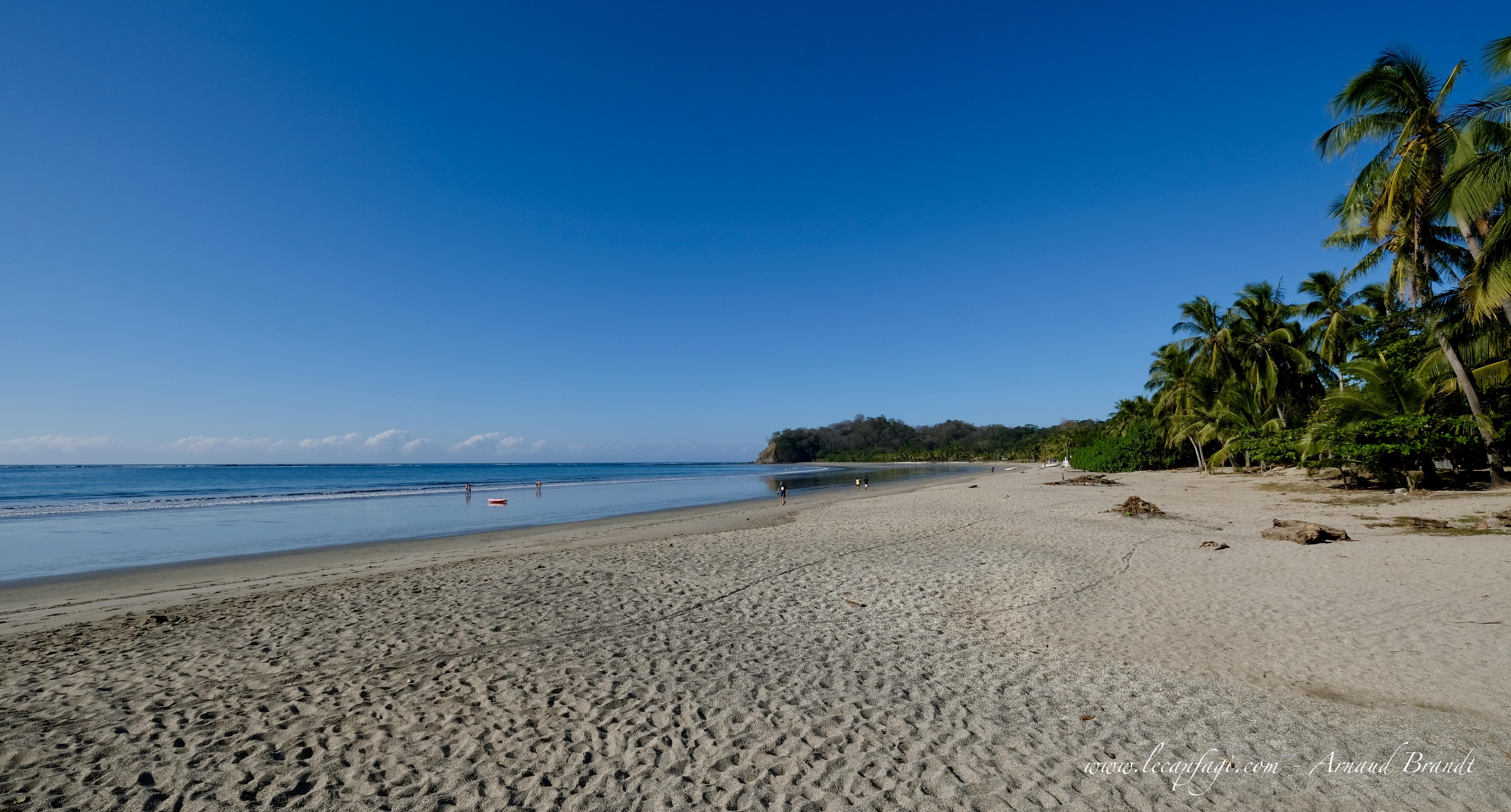 Parc National Marin Las Baulas