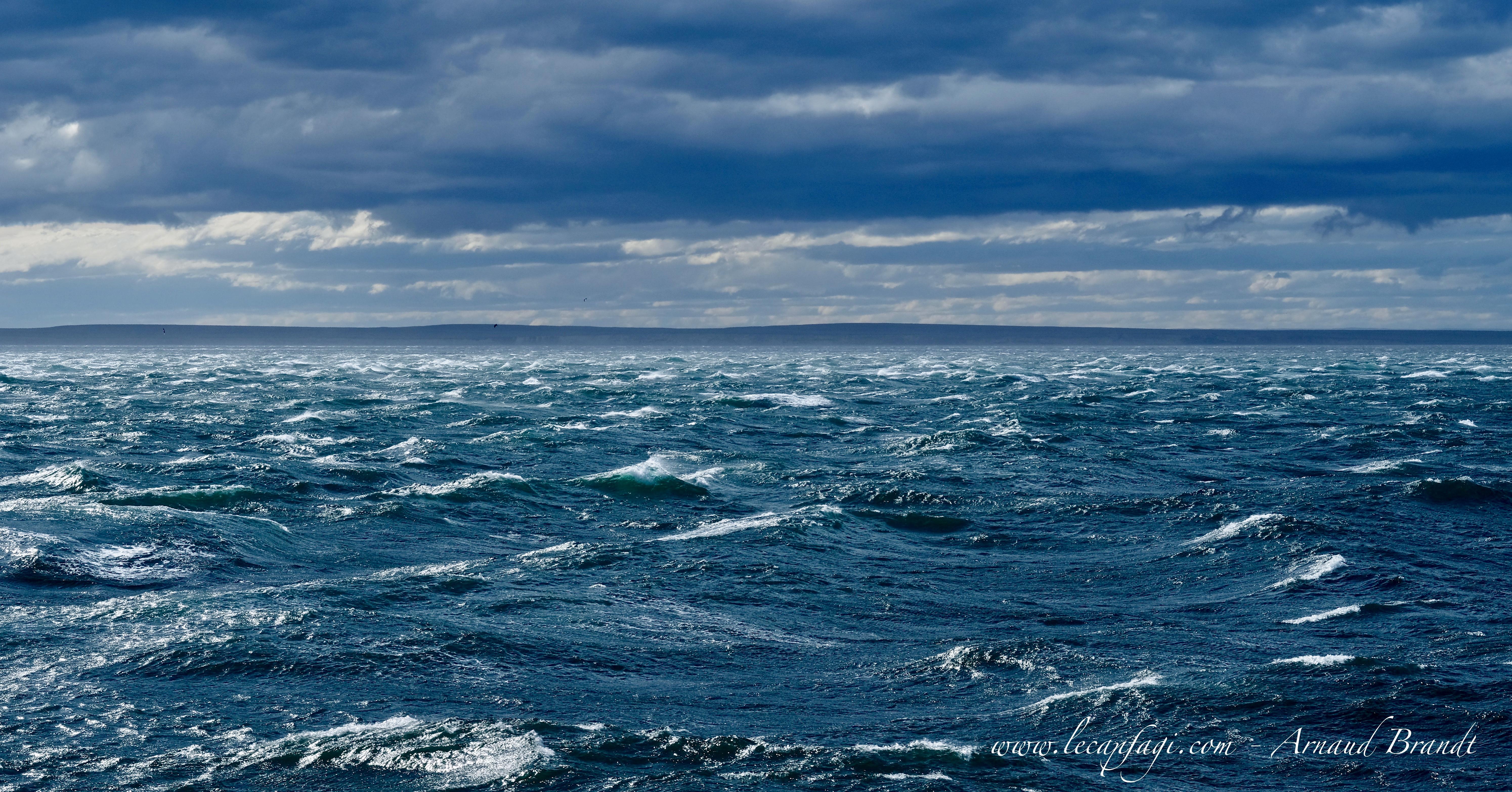 Punta Arenas - détroit de Magellan