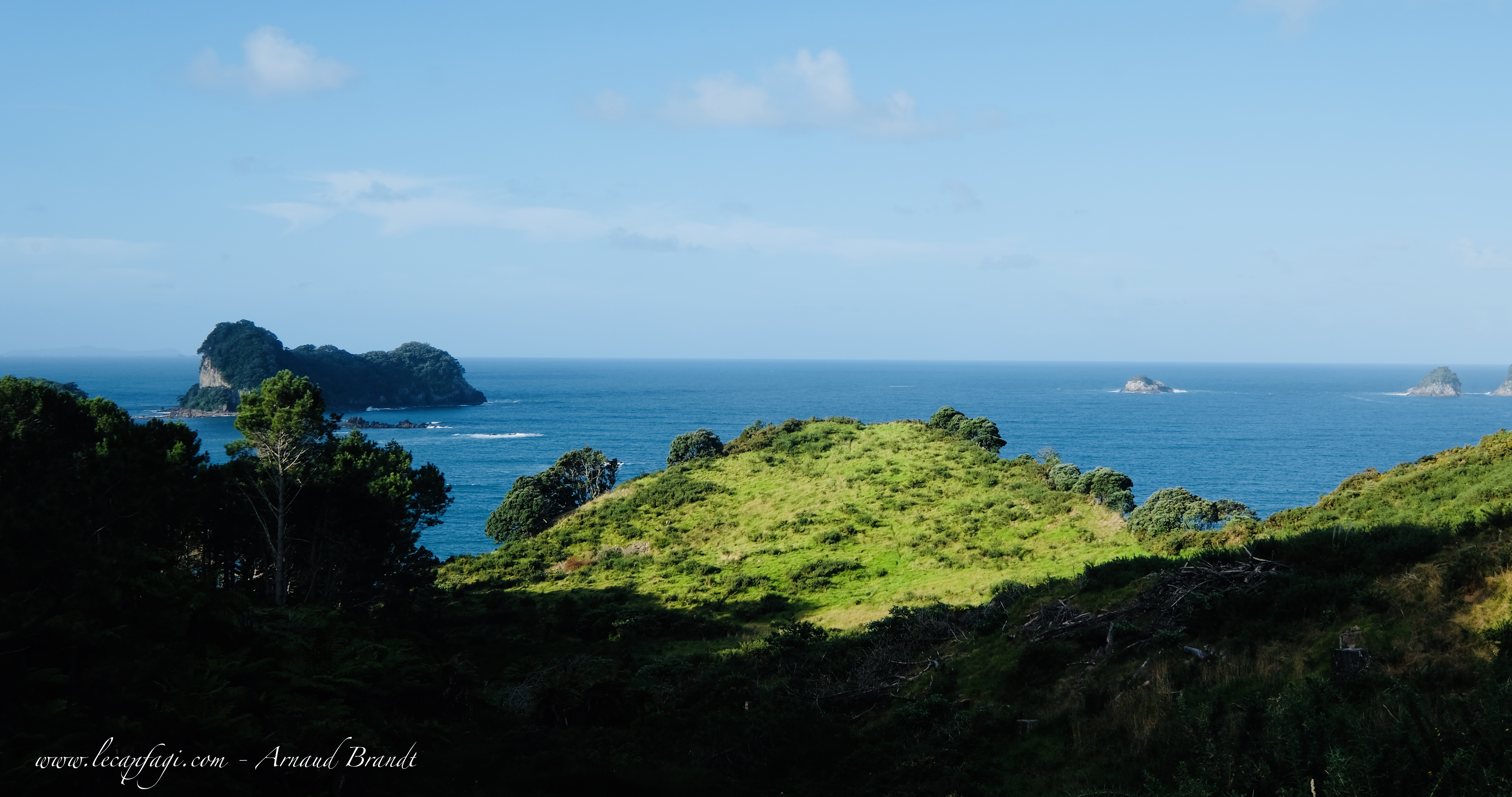 Coromandel - walk to Cathedral Cove