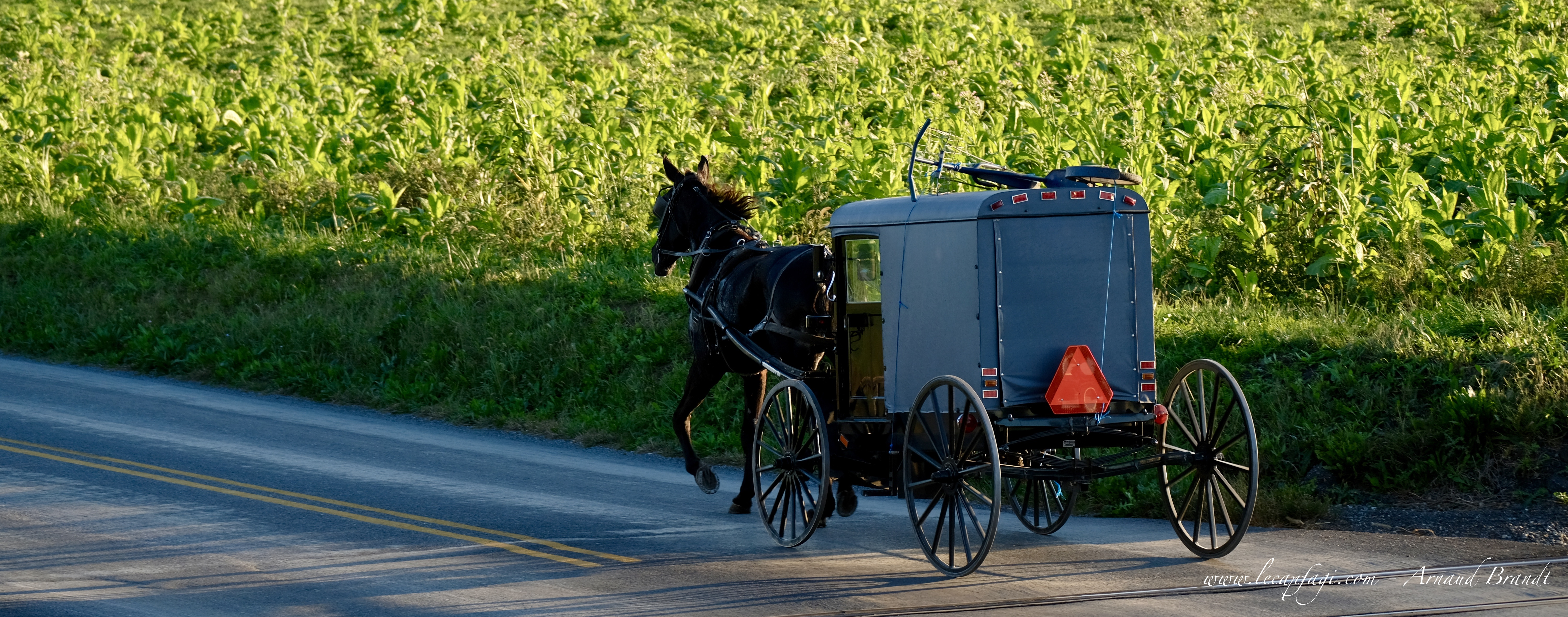 Lancaster county - home of the Amish