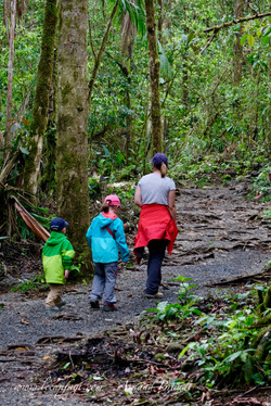 Parc National Volcan Tenorio