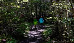 Ushuaïa - Parc Nat. Tierra del Fuego