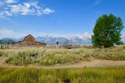 Teton - Old Barn