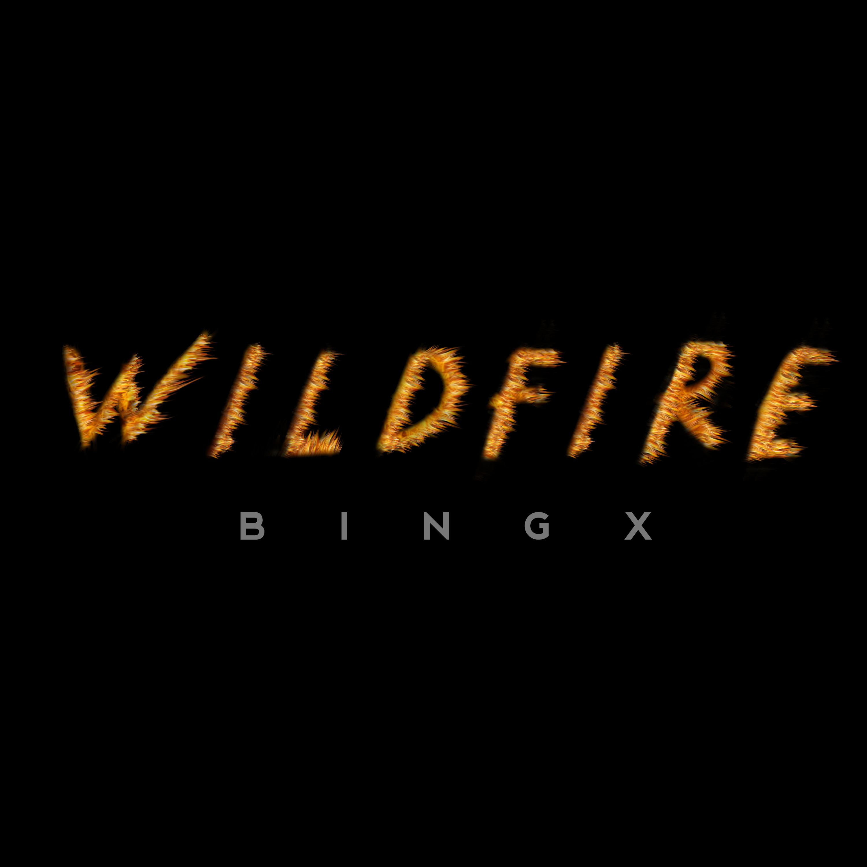 Wildfire Single Cover 1-2