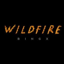 Wildfire Single Cover 1-2