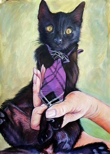 Pets Young Black cat Tie.jpg